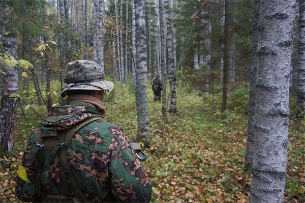 Forest, Military, Camo, Airsoft, Soldier, Scout